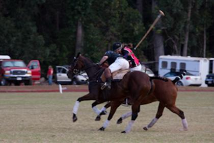 Upcountry Polo Match